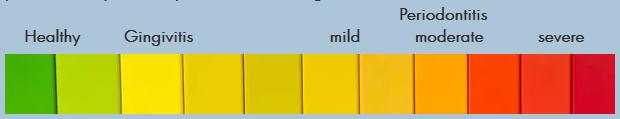 Gum Health Scale